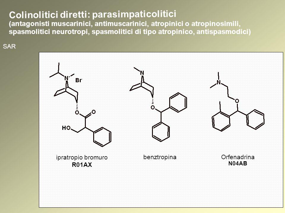 SAR ipratropio bromuro R01AX benztropina Orfenadrina N04AB Colinolitici diretti: parasimpaticolitici (antagonisti muscarinici, antimuscarinici, atropinici o atropinosimili, spasmolitici neurotropi, spasmolitici di tipo atropinico, antispasmodici)