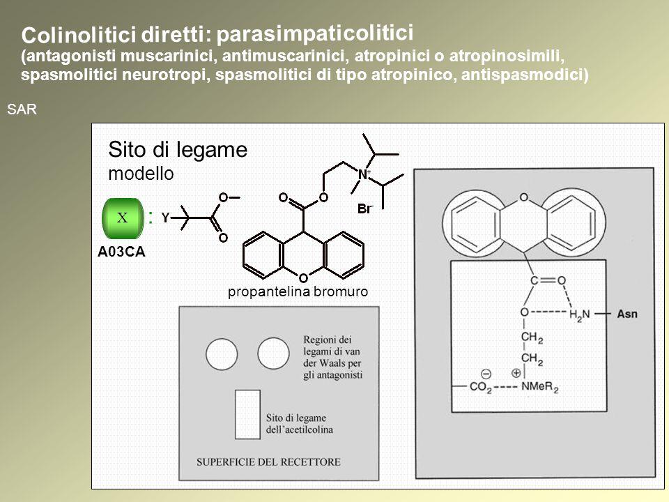 SAR Sito di legame modello propantelina bromuro Colinolitici diretti: parasimpaticolitici (antagonisti muscarinici, antimuscarinici, atropinici o atropinosimili, spasmolitici neurotropi, spasmolitici di tipo atropinico, antispasmodici) X : A03CA