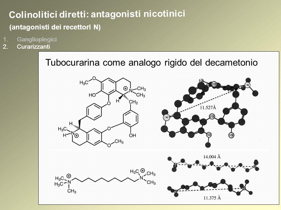 1.Ganglioplegici 2.Curarizzanti (antagonisti dei recettori N) 1.Ganglioplegici 2.Curarizzanti Colinolitici diretti: antagonisti nicotinici Tubocurarina come analogo rigido del decametonio