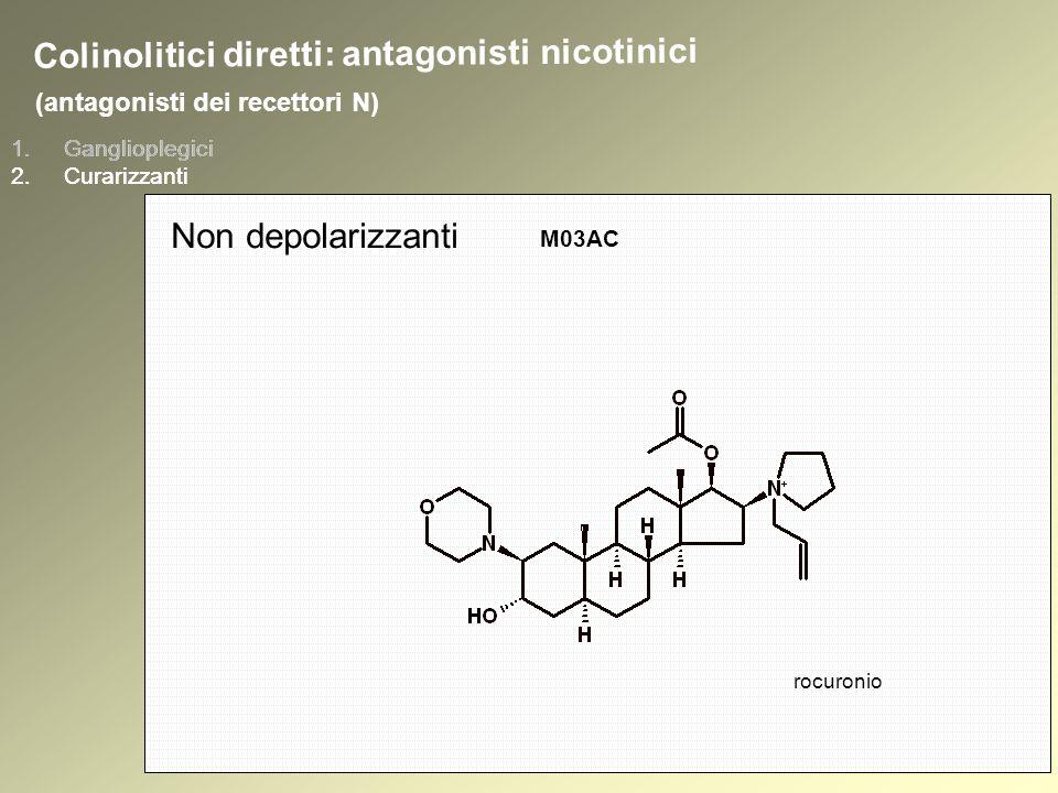 1.Ganglioplegici 2.Curarizzanti (antagonisti dei recettori N) 1.Ganglioplegici 2.Curarizzanti Colinolitici diretti: antagonisti nicotinici Non depolarizzanti M03AC rocuronio