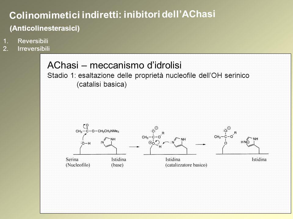 1.Reversibili 2.Irreversibili (Anticolinesterasici) Colinomimetici indiretti: inibitori dellAChasi AChasi – meccanismo didrolisi Stadio 1: esaltazione delle proprietà nucleofile dellOH serinico (catalisi basica)