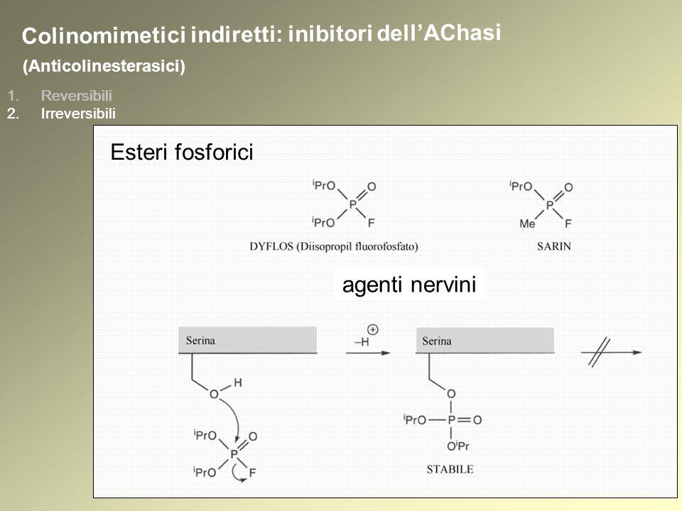 1.Reversibili 2.Irreversibili (Anticolinesterasici) Colinomimetici indiretti: inibitori dellAChasi Esteri fosforici 1.Reversibili 2.Irreversibili agenti nervini