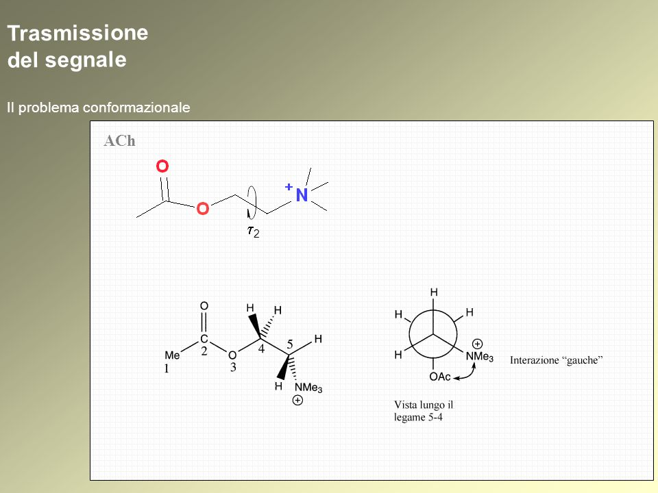 SAR atropina atropina + benztropina atropina + benztropina + biperidene atropina + benztropina + biperidene + triesifenidile atropina + benztropina + biperidene + triesifenidile + metixene N O N N N S Farmacoforo Colinolitici diretti: parasimpaticolitici (antagonisti muscarinici, antimuscarinici, atropinici o atropinosimili, spasmolitici neurotropi, spasmolitici di tipo atropinico, antispasmodici)