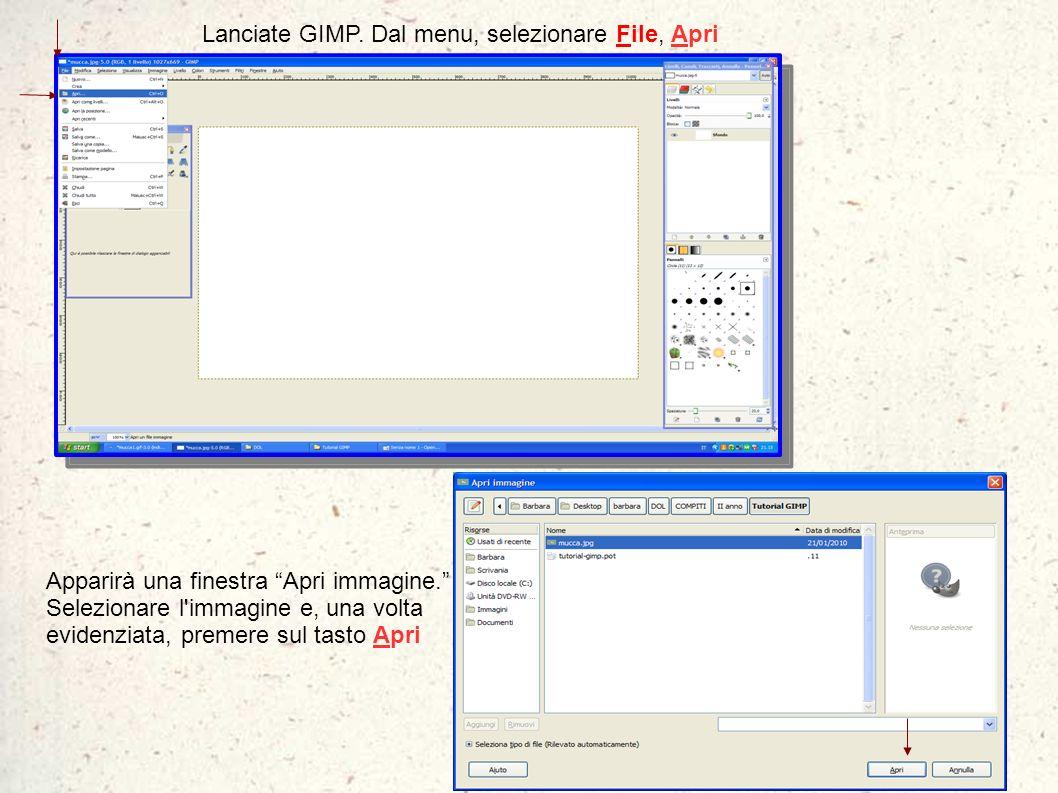 Lanciate GIMP. Dal menu, selezionare File, Apri Apparirà una finestra Apri immagine. Selezionare l'immagine e, una volta evidenziata, premere sul tast