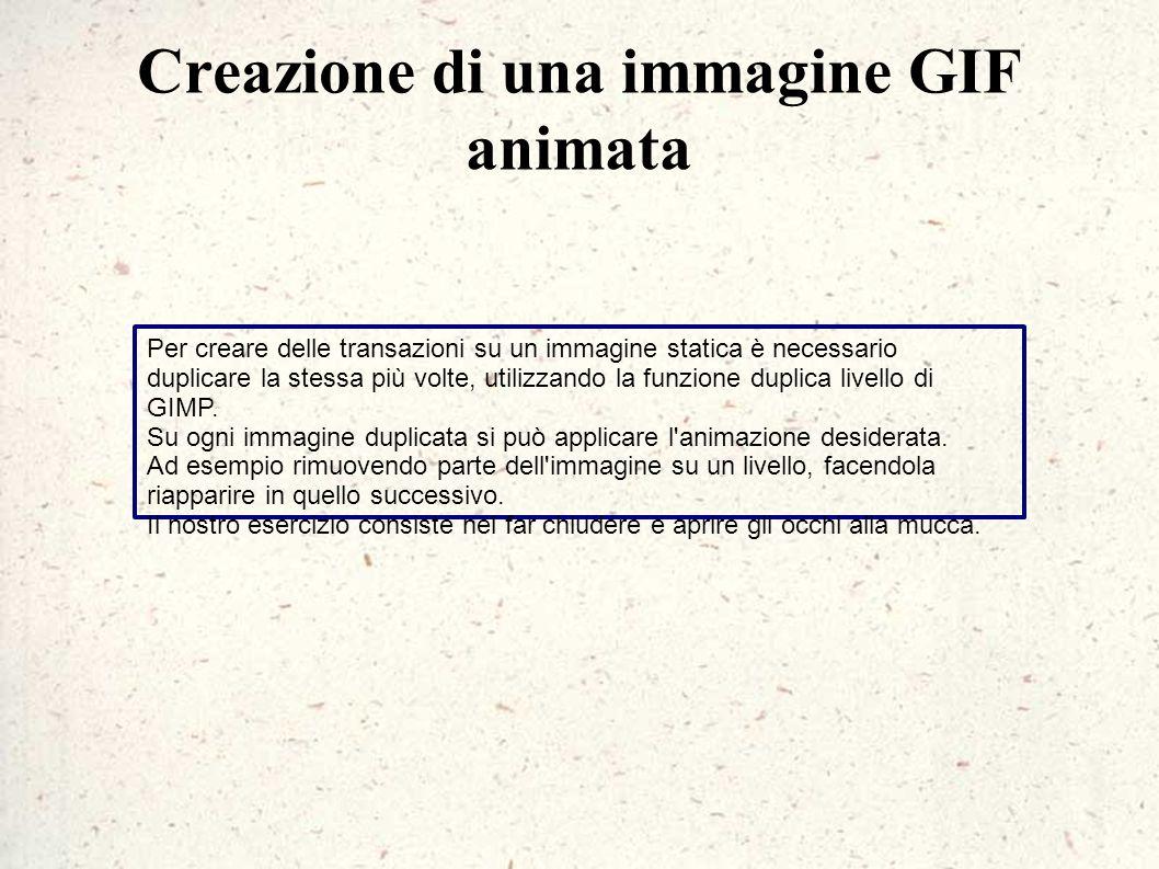 Creazione di una immagine GIF animata Per creare delle transazioni su un immagine statica è necessario duplicare la stessa più volte, utilizzando la f