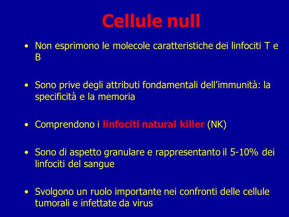 RECETTORE CELLULE BRECETTORE CELLULE T