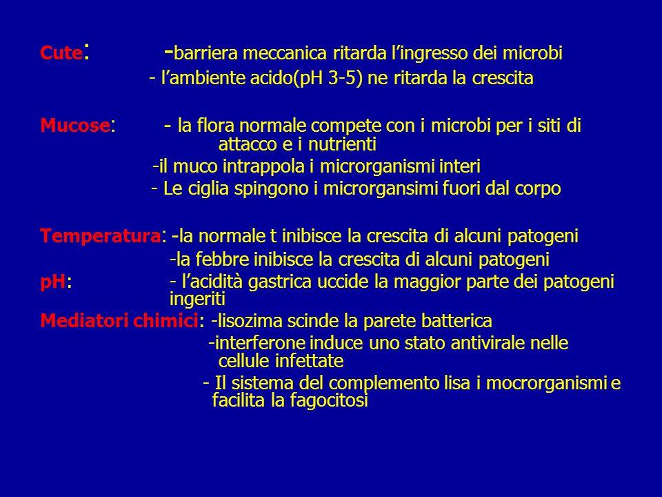 IMMUNITA INNATA Comprende 4 tipi di barriere: –Anatomica Cute Superficie delle mucose –Fisiologica Temperatura pH Fattori solubili –Endocitica/fagocitica fagocitosi –Infiammatoria Complesso Risposta infiammatoria