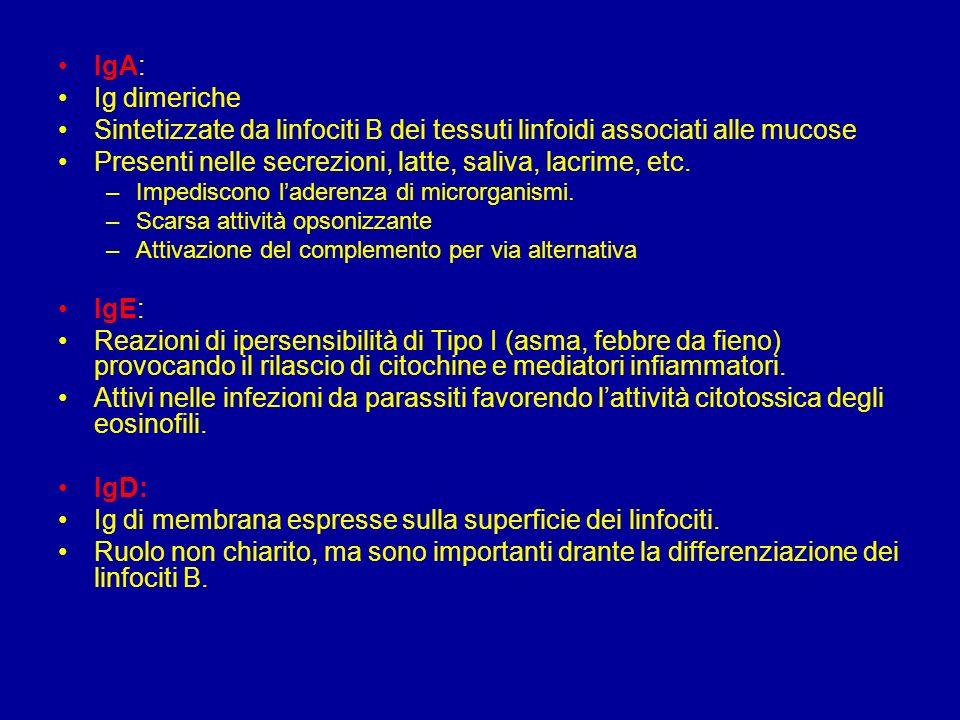 : –opsonizzazione –neutralizzazione di microbi e tossine –a