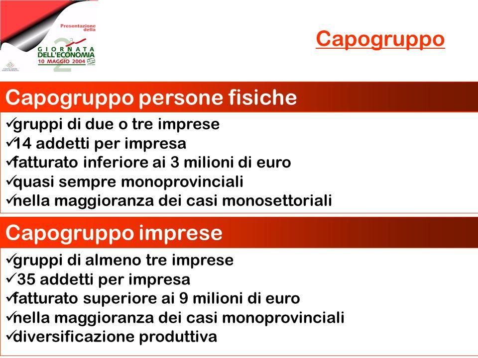 Capogruppo Capogruppo persone fisiche gruppi di due o tre imprese 14 addetti per impresa fatturato inferiore ai 3 milioni di euro quasi sempre monopro