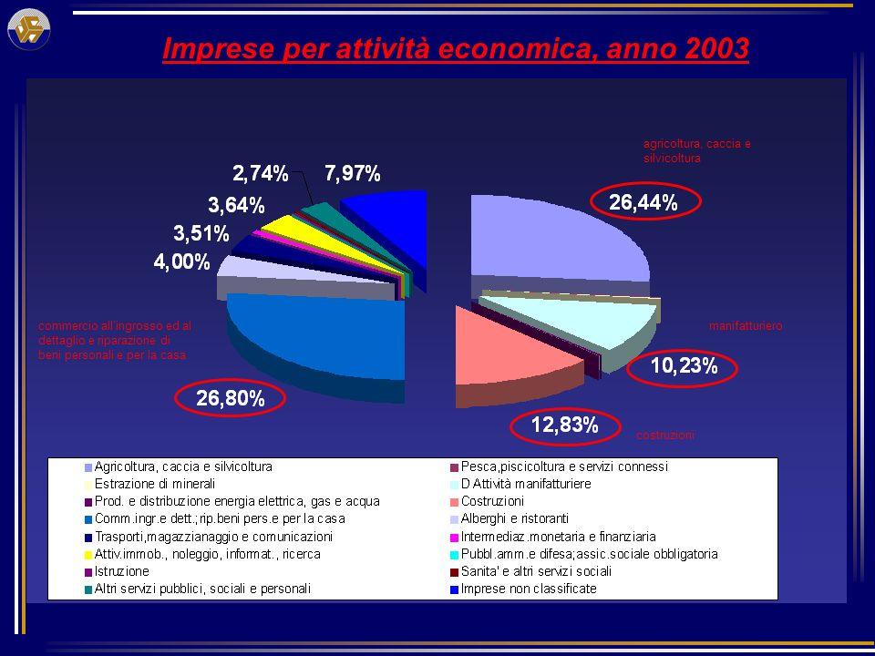Imprese per attività economica, anno 2003 commercio allingrosso ed al dettaglio e riparazione di beni personali e per la casa agricoltura, caccia e silvicoltura manifatturiero costruzioni