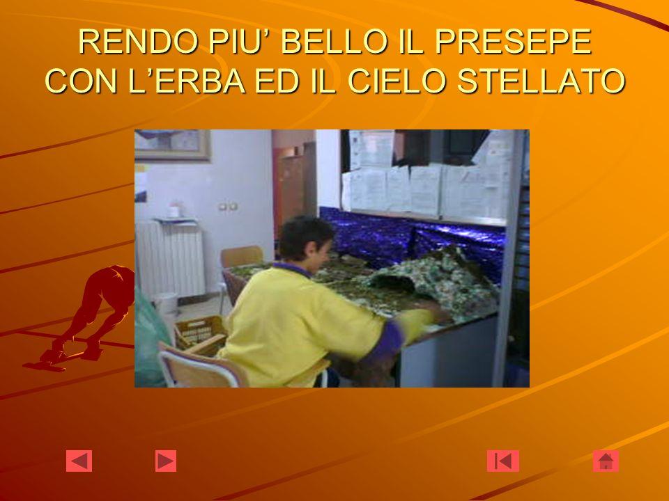 RENDO PIU BELLO IL PRESEPE CON LERBA ED IL CIELO STELLATO