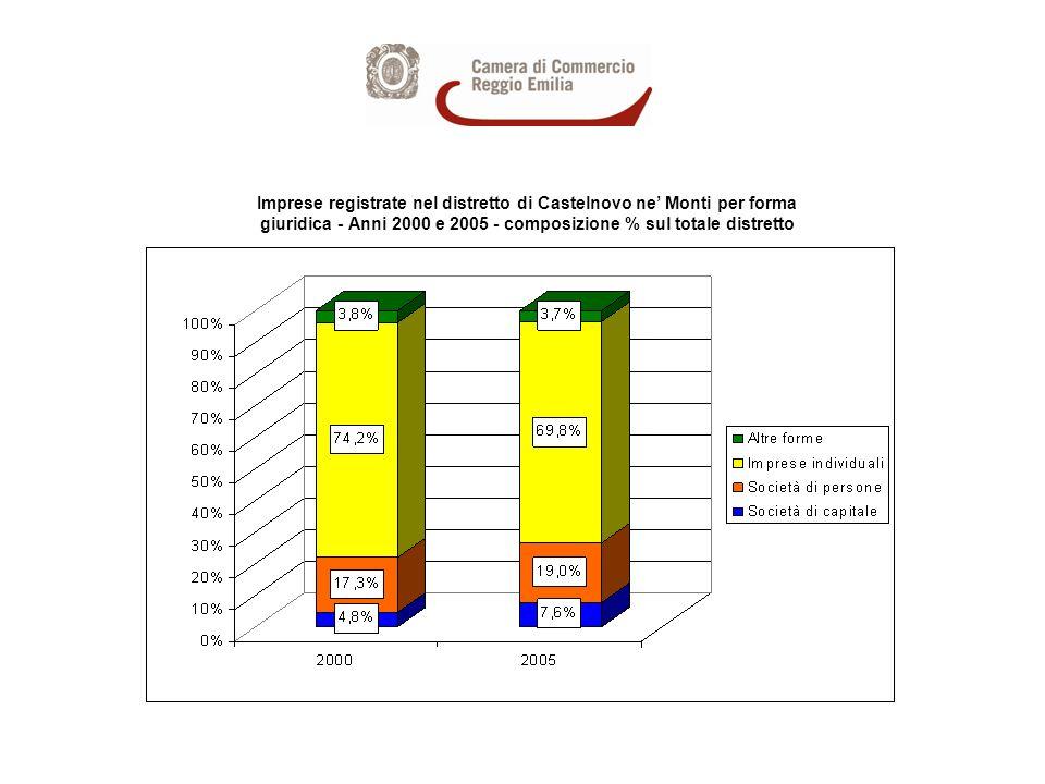 Imprese registrate nel distretto di Castelnovo ne Monti per forma giuridica - Anni 2000 e 2005 - composizione % sul totale distretto