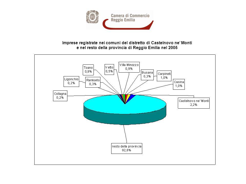 Imprese registrate nei comuni del distretto di Castelnovo ne Monti e nel resto della provincia di Reggio Emilia nel 2005