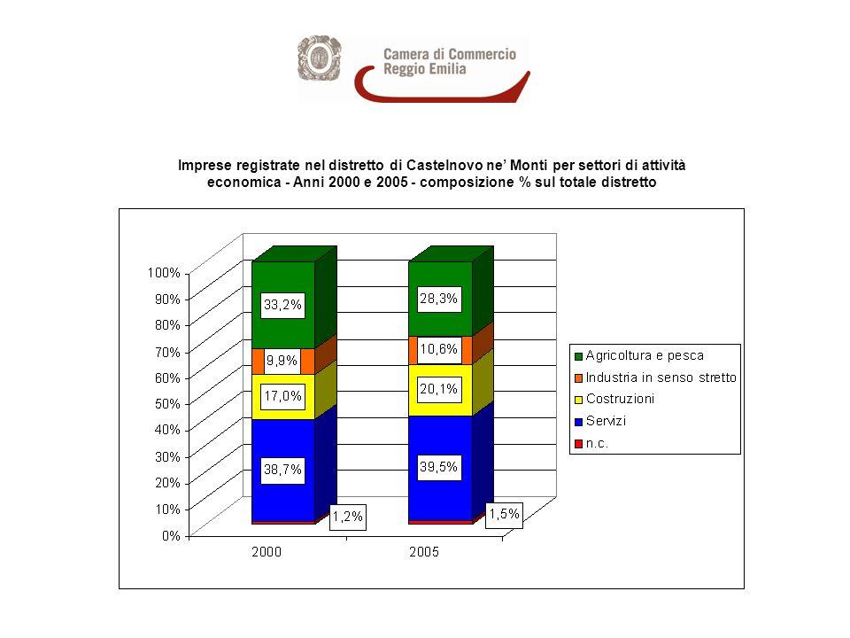 Imprese registrate nel distretto di Castelnovo ne Monti per settori di attività economica - Anni 2000 e 2005 - composizione % sul totale distretto