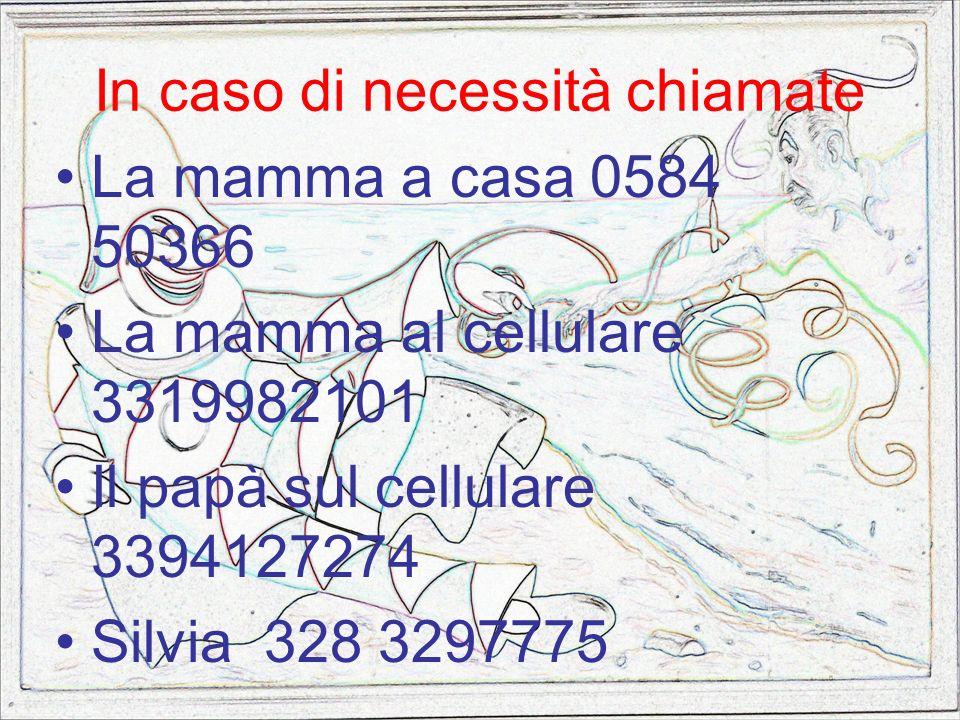In caso di necessità chiamate La mamma a casa 0584 50366 La mamma al cellulare 3319982101 Il papà sul cellulare 3394127274 Silvia 328 3297775