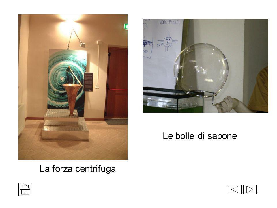 La forza centrifuga Le bolle di sapone