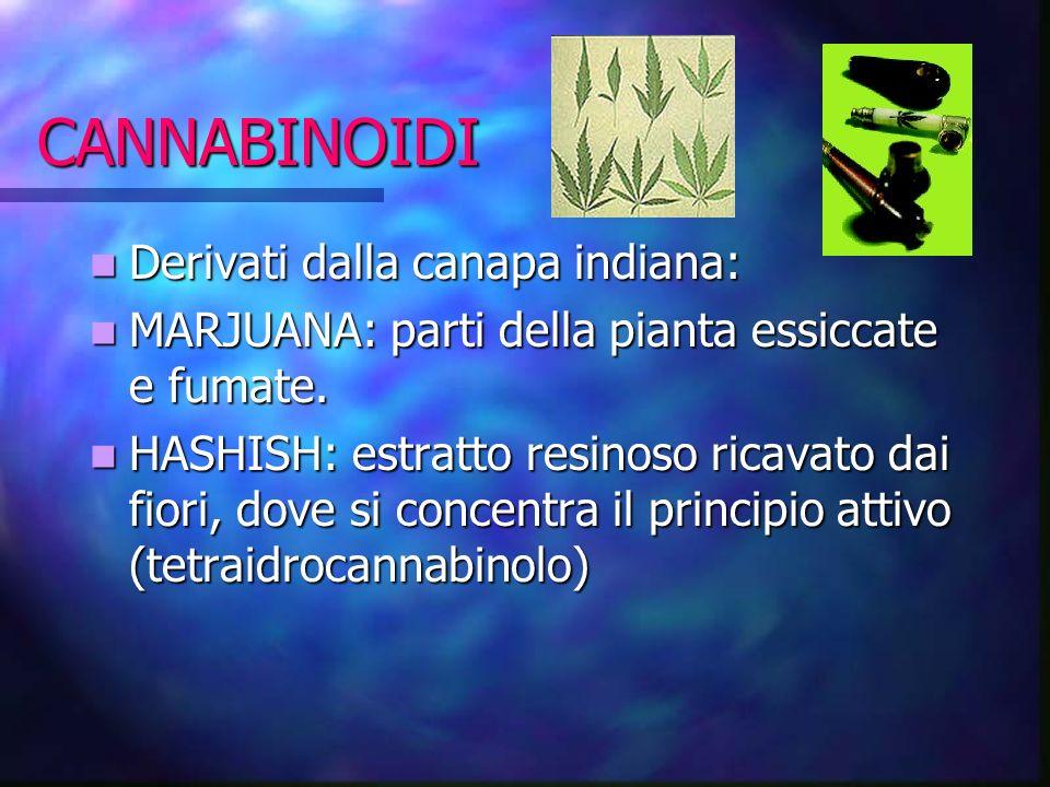 CANNABINOIDI Derivati dalla canapa indiana: Derivati dalla canapa indiana: MARJUANA: parti della pianta essiccate e fumate. MARJUANA: parti della pian