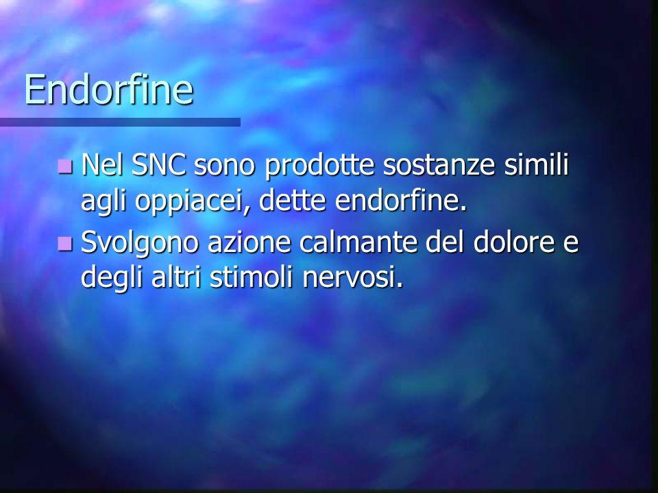 Endorfine Nel SNC sono prodotte sostanze simili agli oppiacei, dette endorfine. Nel SNC sono prodotte sostanze simili agli oppiacei, dette endorfine.