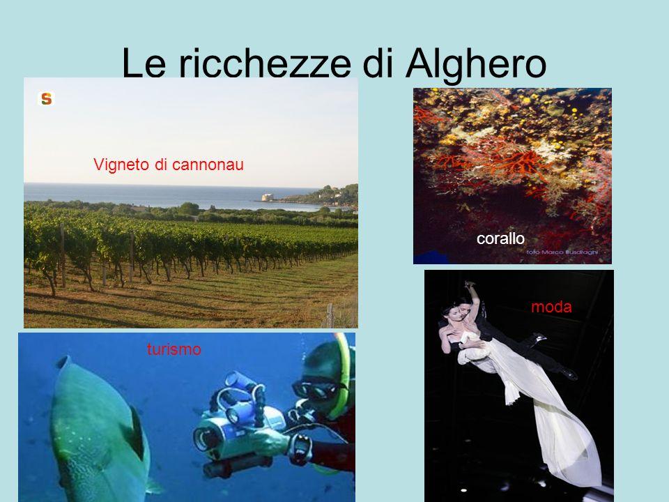 Le ricchezze di Alghero Vigneto di cannonau turismo corallo moda