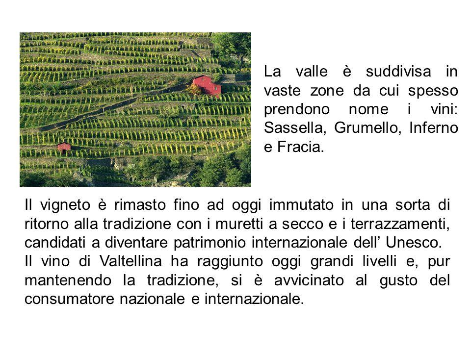 La valle è suddivisa in vaste zone da cui spesso prendono nome i vini: Sassella, Grumello, Inferno e Fracia. Il vigneto è rimasto fino ad oggi immutat