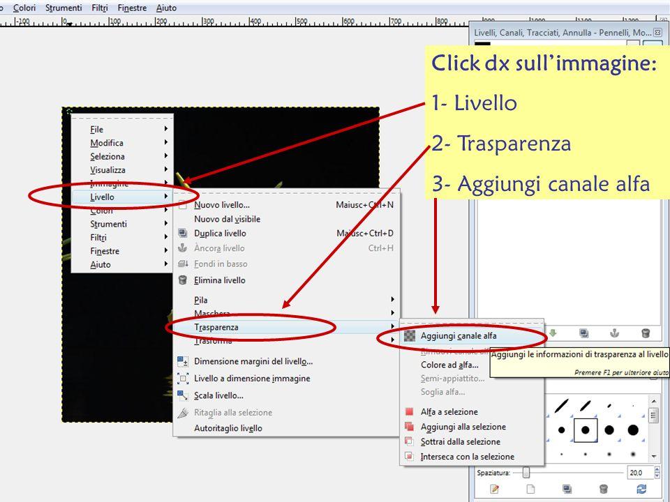 Click dx sullimmagine: 1- Livello 2- Trasparenza 3- Aggiungi canale alfa