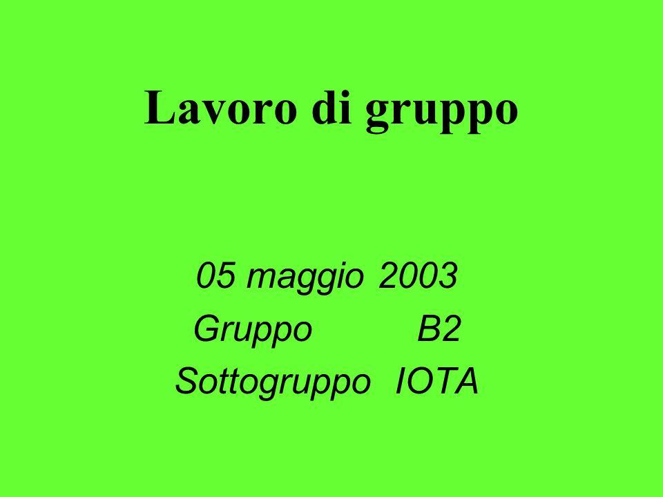 Lavoro di gruppo 05 maggio 2003 Gruppo B2 Sottogruppo IOTA