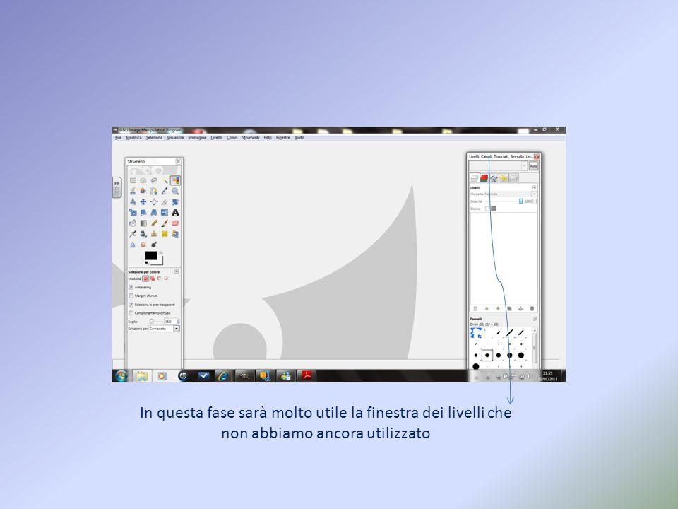 Il successivo lavoro sarà quello di creare grazie a GIMP unimmagine GIF animata