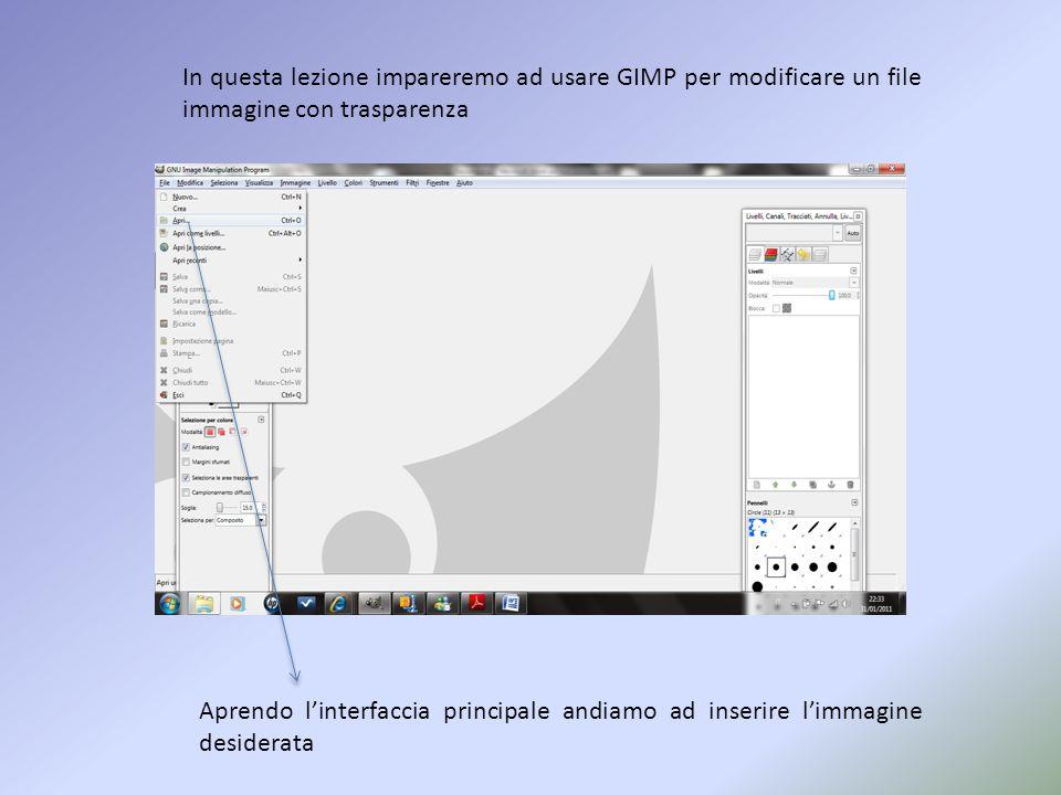 Interfaccia Finestra degli strumenti Finestra dei livelli Allapertura del programma la videata si presenta in questo modo