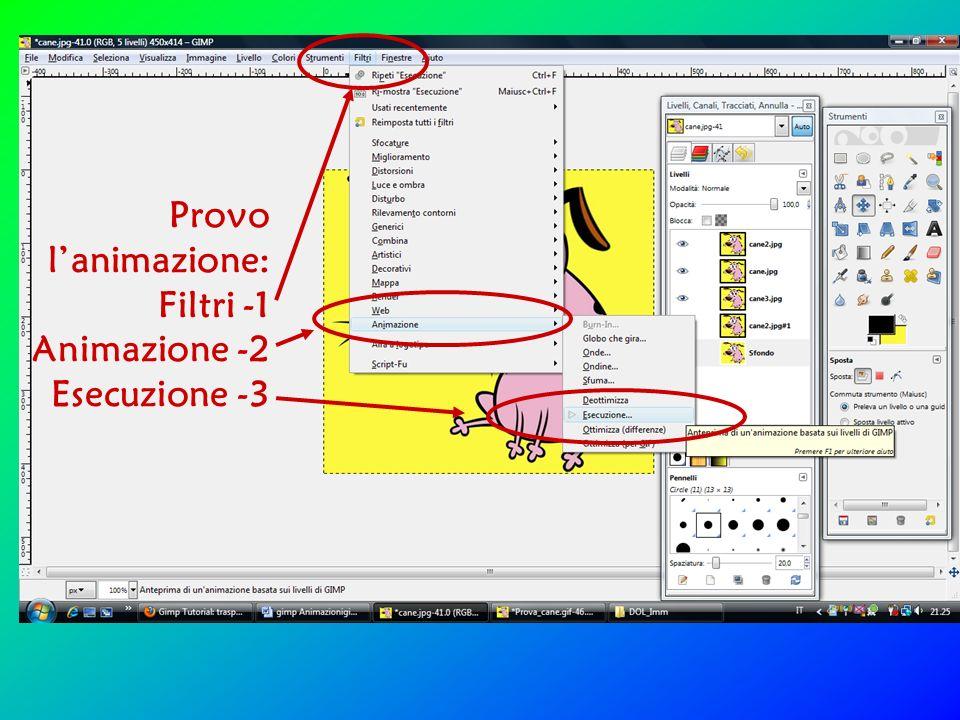 Si apre la finestra Esecuzione animazione click su Riproduci