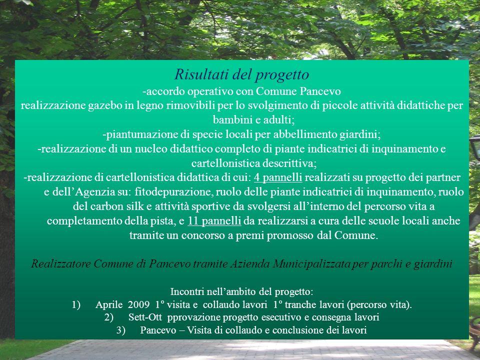 Risultati del progetto -accordo operativo con Comune Pancevo realizzazione gazebo in legno rimovibili per lo svolgimento di piccole attività didattich
