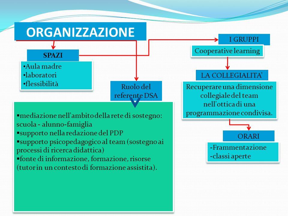 ORGANIZZAZIONE Aula madre laboratori flessibilità Aula madre laboratori flessibilità SPAZI Ruolo del referente DSA ORARI I GRUPPI LA COLLEGIALITA medi