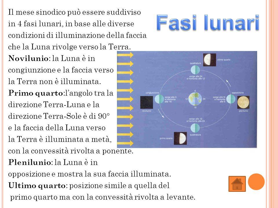 Il mese sinodico può essere suddiviso in 4 fasi lunari, in base alle diverse condizioni di illuminazione della faccia che la Luna rivolge verso la Ter