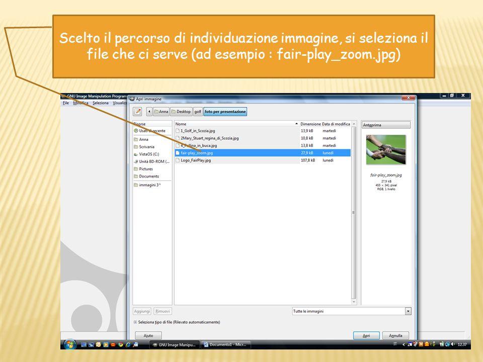 Scelto il percorso di individuazione immagine, si seleziona il file che ci serve (ad esempio : fair-play_zoom.jpg)