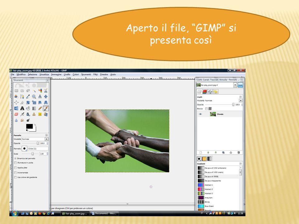 Aperto il file, GIMP si presenta così