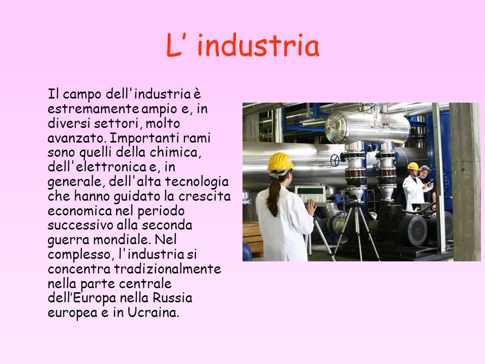 L industria Il campo dell'industria è estremamente ampio e, in diversi settori, molto avanzato. Importanti rami sono quelli della chimica, dell'elettr