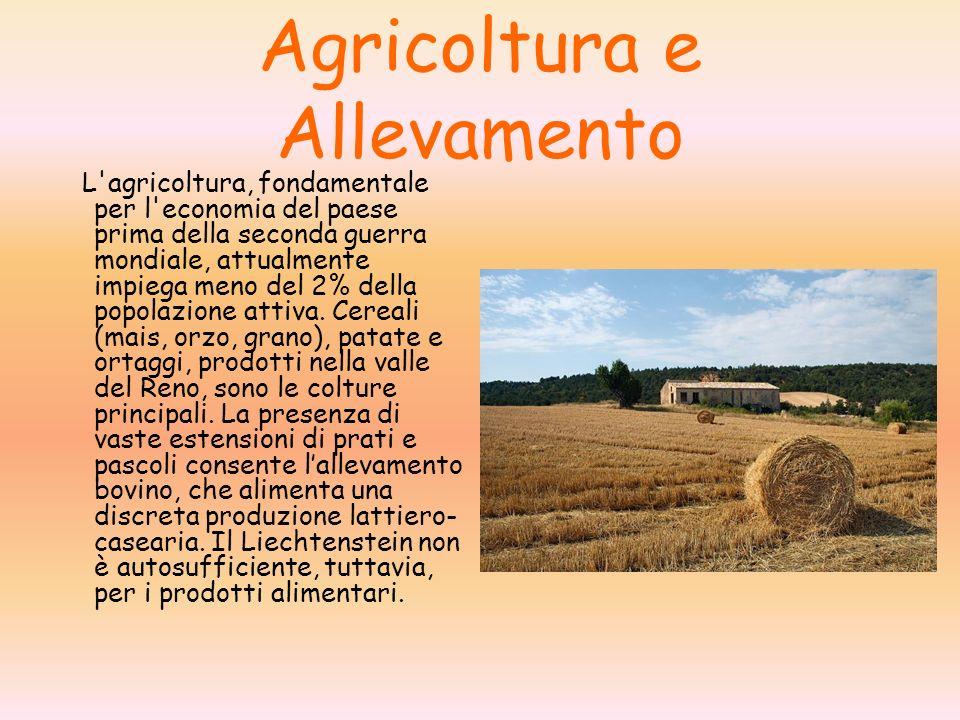 Agricoltura e Allevamento L agricoltura, fondamentale per l economia del paese prima della seconda guerra mondiale, attualmente impiega meno del 2% della popolazione attiva.