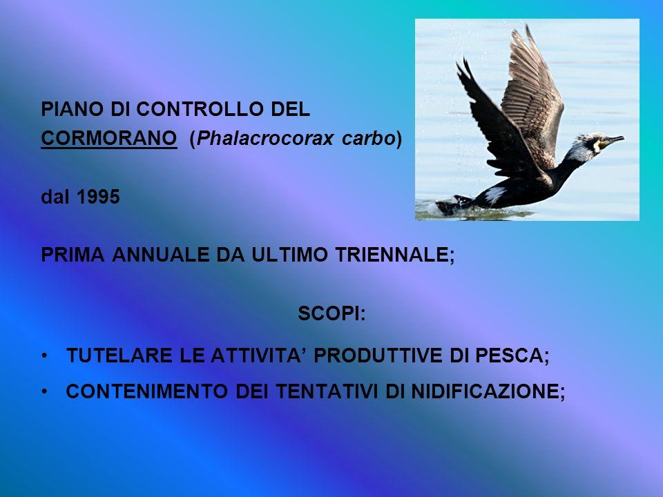 PIANO DI CONTROLLO DEL CORMORANO (Phalacrocorax carbo) dal 1995 PRIMA ANNUALE DA ULTIMO TRIENNALE; SCOPI: TUTELARE LE ATTIVITA PRODUTTIVE DI PESCA; CO