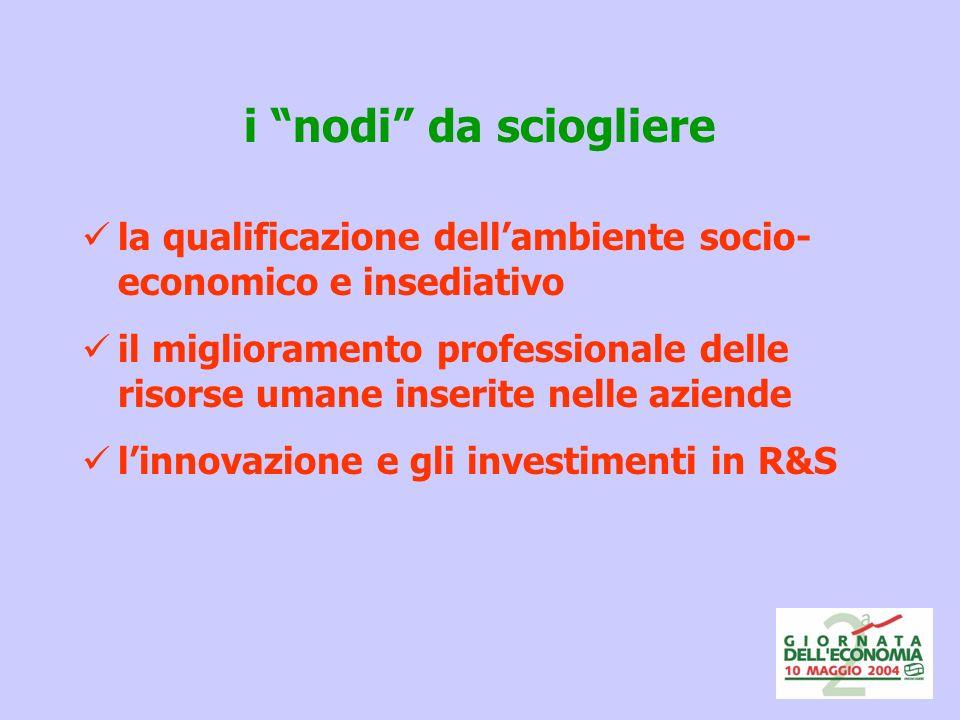 i nodi da sciogliere la qualificazione dellambiente socio- economico e insediativo il miglioramento professionale delle risorse umane inserite nelle aziende linnovazione e gli investimenti in R&S