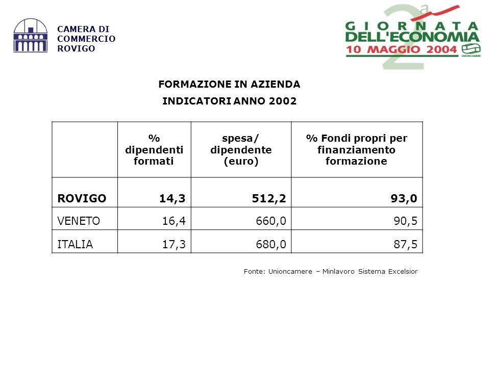 Fonte: Unioncamere – Minlavoro Sistema Excelsior CAMERA DI COMMERCIO ROVIGO FORMAZIONE IN AZIENDA INDICATORI ANNO 2002 % dipendenti formati spesa/ dipendente (euro) % Fondi propri per finanziamento formazione ROVIGO14,3512,293,0 VENETO16,4660,090,5 ITALIA17,3680,087,5