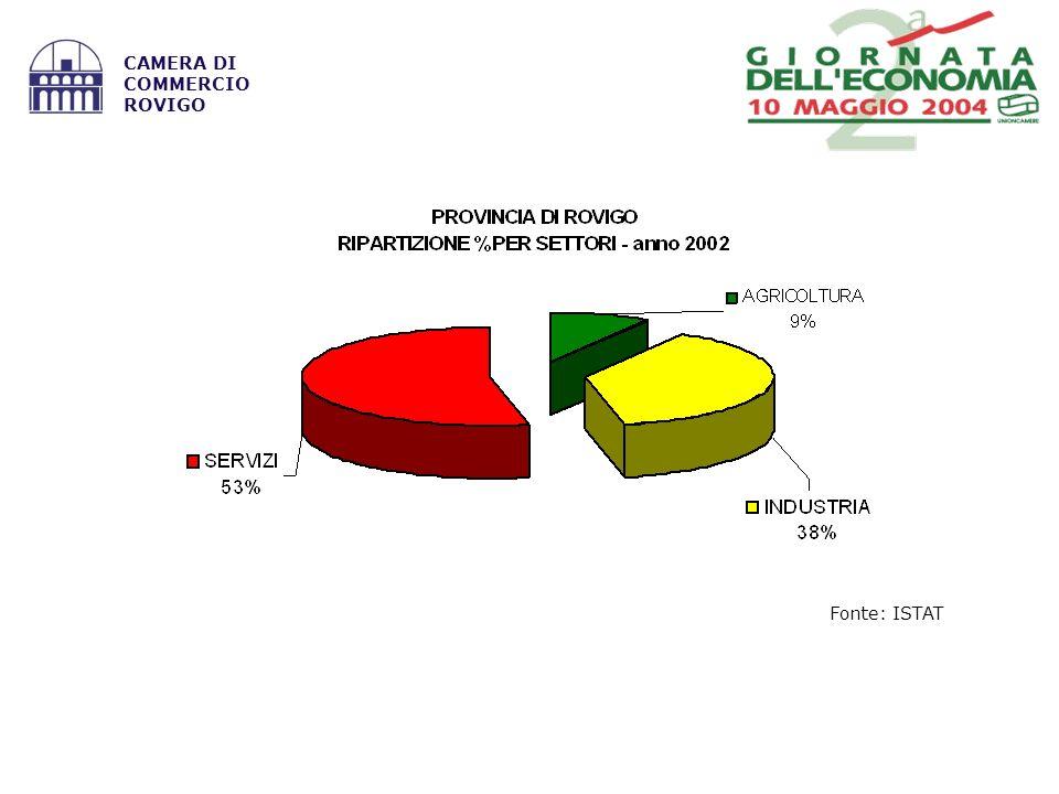 Fonte: ISTAT CAMERA DI COMMERCIO ROVIGO