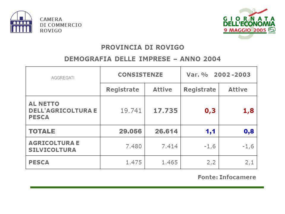 Fonte: Infocamere CAMERA DI COMMERCIO ROVIGO AGGREGATI CONSISTENZEVar.
