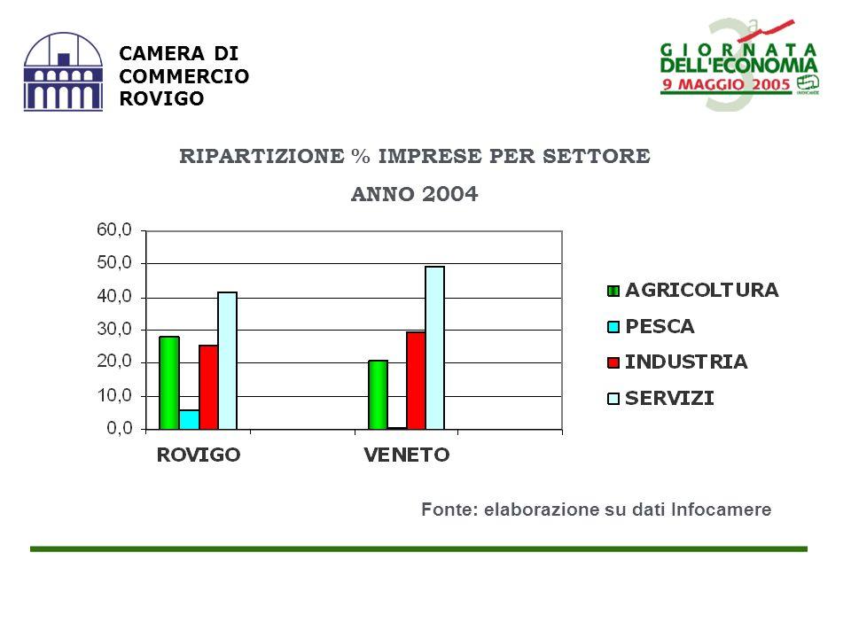 RIPARTIZIONE % IMPRESE PER SETTORE ANNO 2004 CAMERA DI COMMERCIO ROVIGO Fonte: elaborazione su dati Infocamere