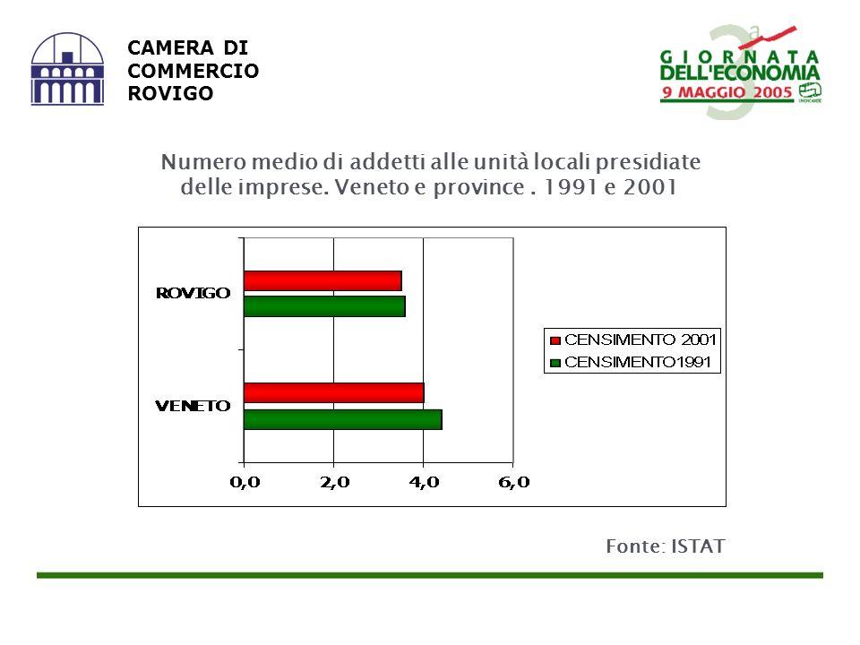 CAMERA DI COMMERCIO ROVIGO Fonte: ISTAT Numero medio di addetti alle unità locali presidiate delle imprese.