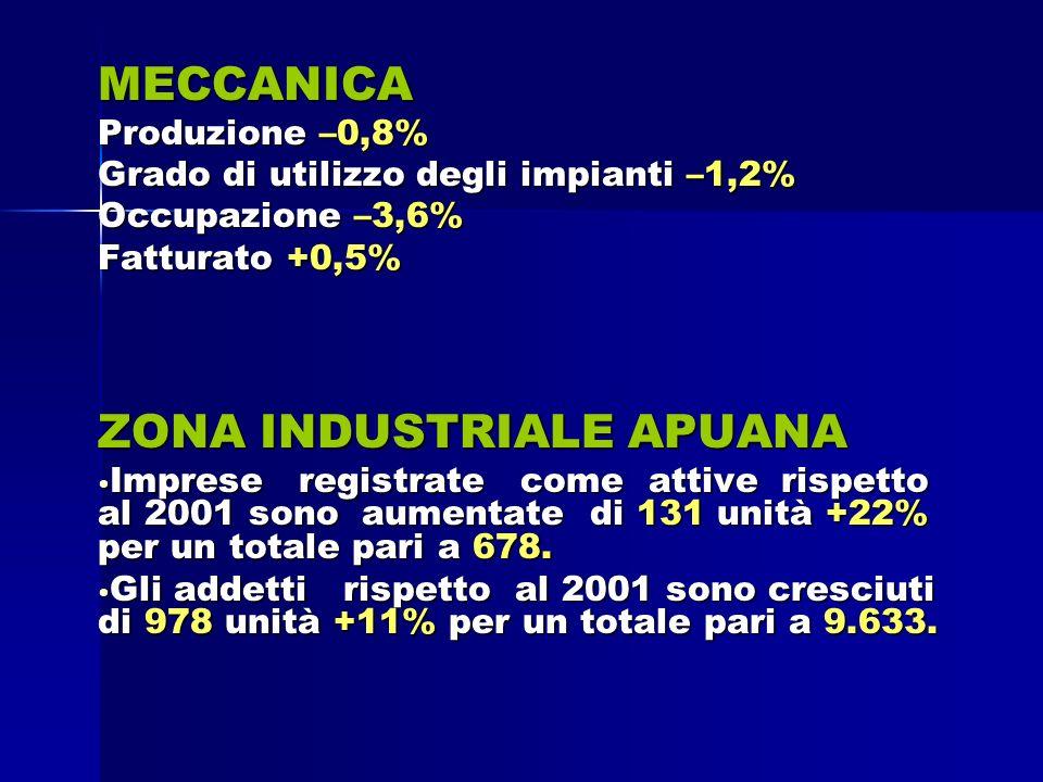 MECCANICA Produzione –0,8% Grado di utilizzo degli impianti –1,2% Occupazione –3,6% Fatturato +0,5% ZONA INDUSTRIALE APUANA Imprese registrate come attive rispetto al 2001 sono aumentate di 131 unità +22% per un totale pari a 678.