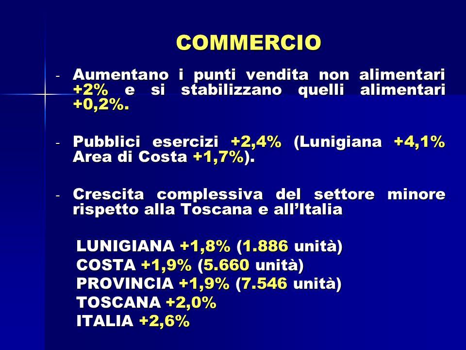 COMMERCIO - Aumentano i punti vendita non alimentari +2% e si stabilizzano quelli alimentari +0,2%.