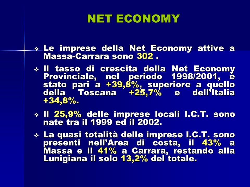 NET ECONOMY Le imprese della Net Economy attive a Massa-Carrara sono 302.