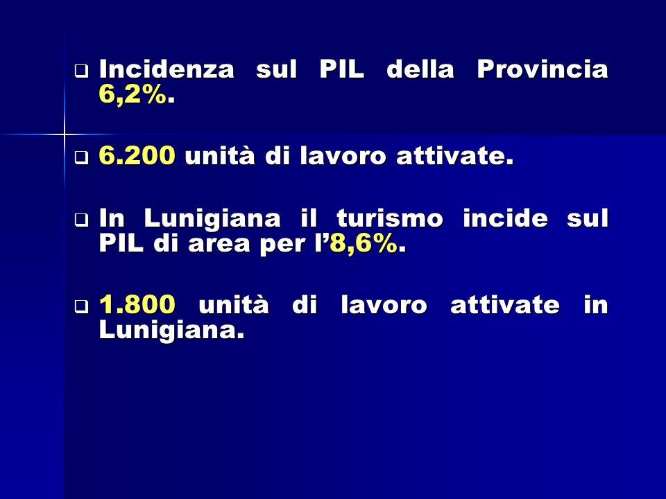 Incidenza sul PIL della Provincia 6,2%. Incidenza sul PIL della Provincia 6,2%.