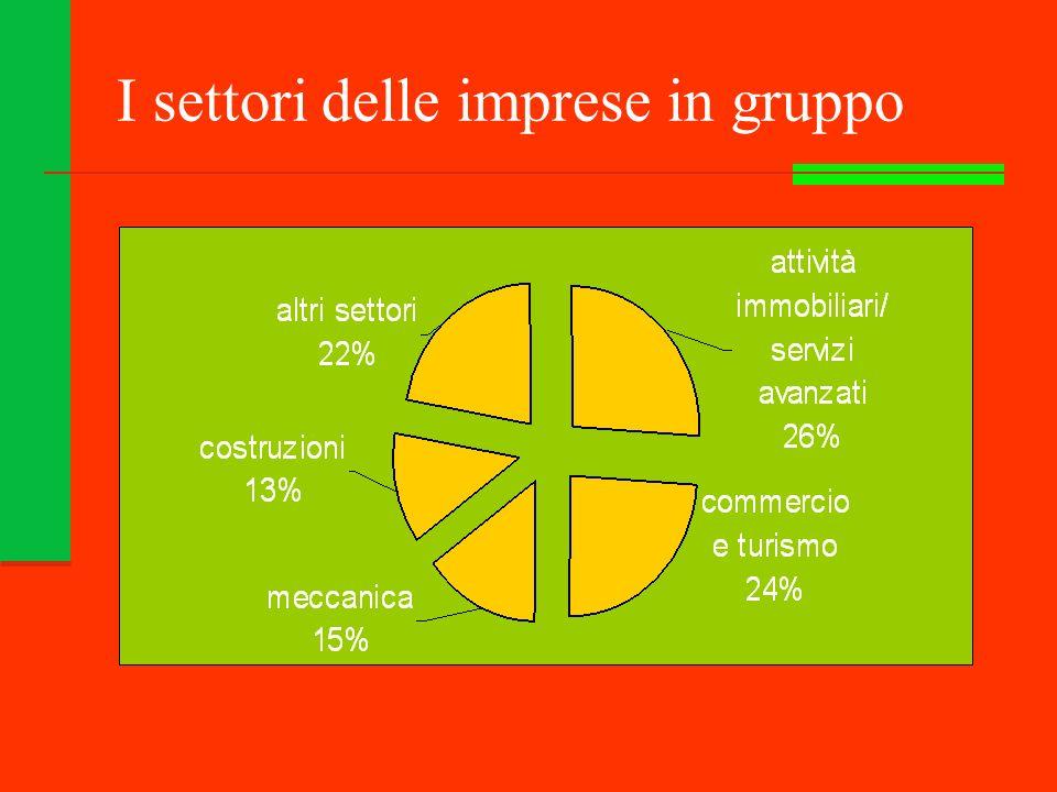 I settori delle imprese in gruppo