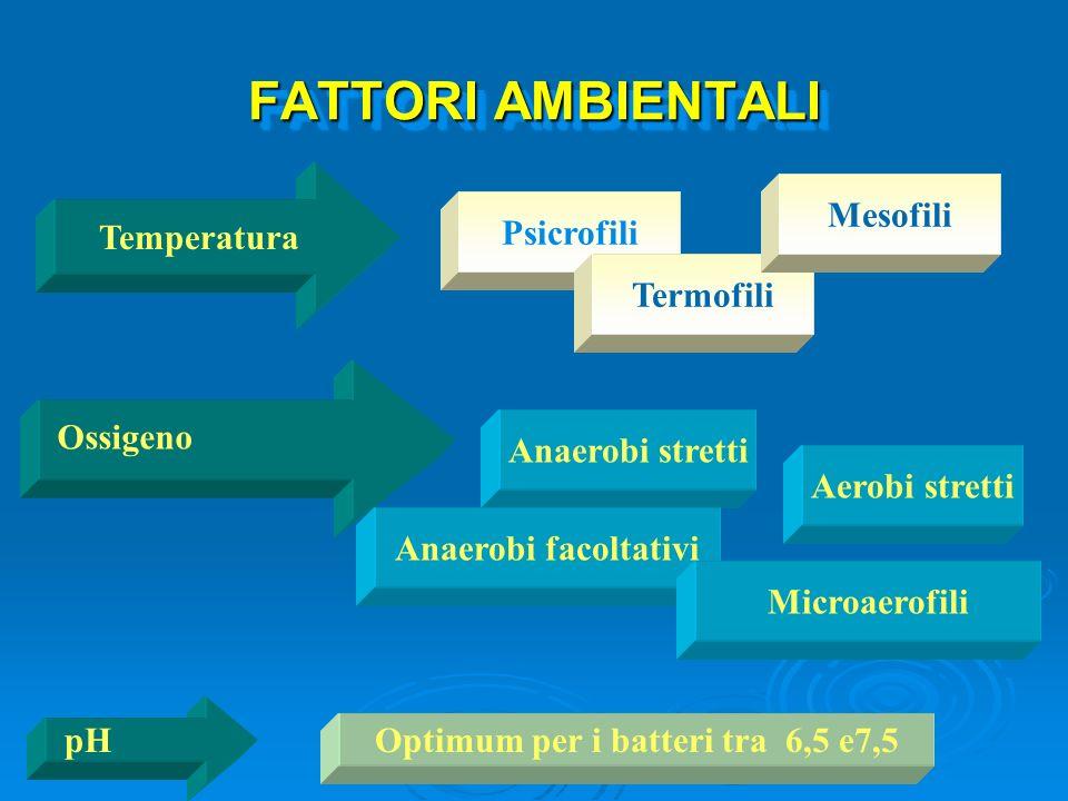 FATTORI AMBIENTALI Temperatura Ossigeno pH Psicrofili Termofili Mesofili Aerobi stretti Anaerobi stretti Anaerobi facoltativi Microaerofili Optimum pe