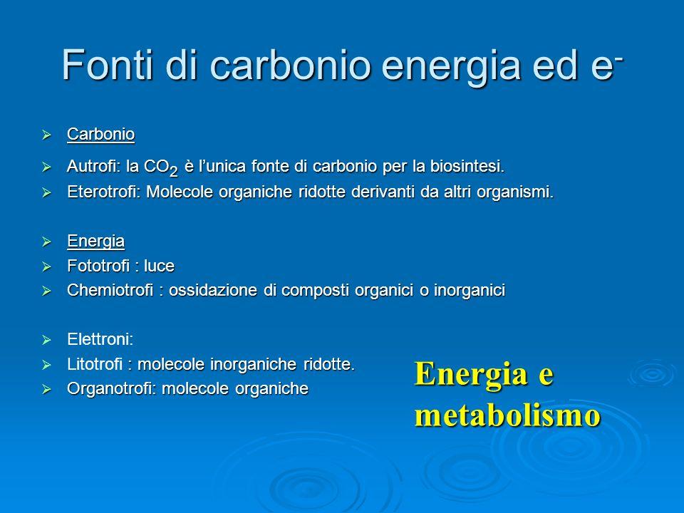 Fonti di carbonio energia ed e - Carbonio Carbonio Autrofi: la CO 2 è lunica fonte di carbonio per la biosintesi. Autrofi: la CO 2 è lunica fonte di c